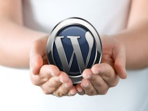 WordPress-ebiznes