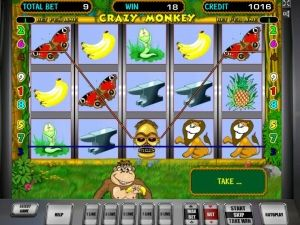 crazy-monkey-pokies77-com-auto-play-pokies-2075-005